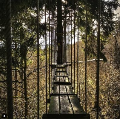 Go Ape,Hen & Stag in Northumberland